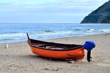 Free Goiters On The Beach Stock Photo - 28264120