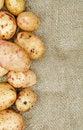 Free Frame Of Raw Potato Stock Image - 28277681