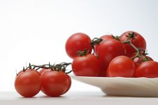 Free Tomatoes Stock Image - 28274351