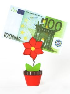 50 Euro In Business Card Holder In The Form Of A Flower Royalty Free Stock Images