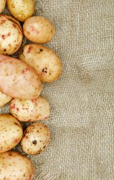 Free Frame Of Raw Potato Stock Image - 28277681
