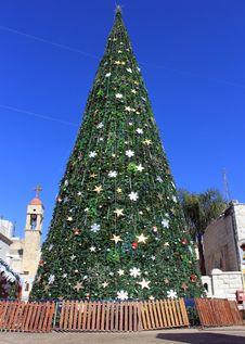 Free Christmas Tree In Nazareth, Israel Stock Photography - 28278042