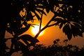 Free Spectacular Sunset Royalty Free Stock Photos - 28284828
