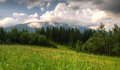 Free Mountain Meadow Royalty Free Stock Image - 28287626