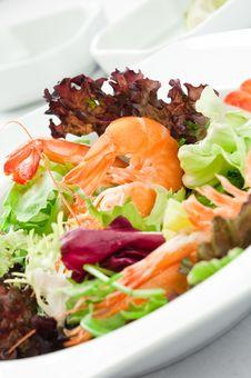 Free Shrimp Salad Royalty Free Stock Images - 28284319