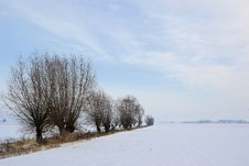 Free Snowscape Royalty Free Stock Images - 28287679