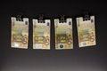 Free Hanging Euro Royalty Free Stock Image - 28292336
