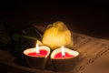 Free Valentine Concept. Rose And Two Heart  Candles Stock Photography - 28299692