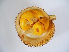 Durian Kulu Royalty Free Stock Photography