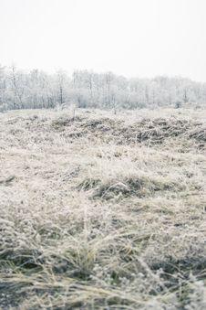 Free Frozen Field Stock Photo - 28293970