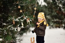 Free Winter Walk Royalty Free Stock Photos - 28296448