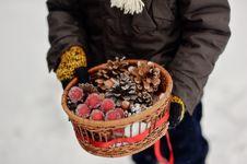 Free Miracle Basket Royalty Free Stock Photos - 28296498