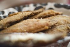 Free Breaded Plaice Fish Royalty Free Stock Images - 28298419