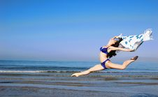 Free Jumping Girl Royalty Free Stock Photo - 2830465