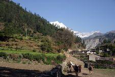 Free Himalaya Trekking Stock Image - 2830791