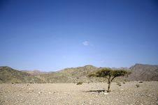 Free Dry Desert In Red Sea Region Stock Images - 2830824