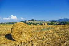 Free Golden Hayfield Stock Image - 2831201