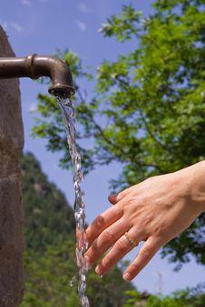 Free Spring Royalty Free Stock Image - 2832136