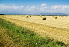Free Harvest Fields Stock Photography - 2832402