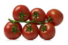 Free Red Tomatoes Stock Photos - 2833483