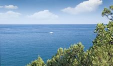 Seascape And  Yachts Royalty Free Stock Photos