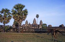 Free Angkor Wat Royalty Free Stock Photos - 2838278