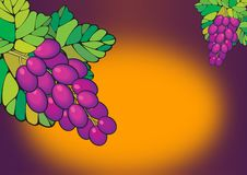 Free Purple Grapes Poster Stock Photography - 2838972