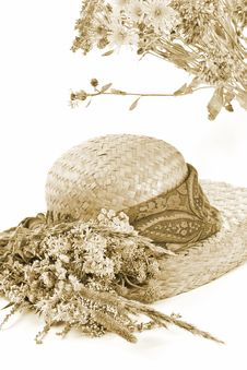 Free Straw Hat And Field Flowers Royalty Free Stock Photos - 2839058