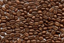 Free Coffee-beans Royalty Free Stock Photography - 2839167