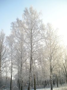 Free Russian Winter Stock Photography - 2839682