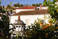 Free Medieval Houses In Ancient City Of Obidos, Portugal Stock Photography - 28304142