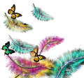 Free Colorful  Background With Ferns And Butterflies Royalty Free Stock Photo - 28304715