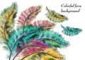 Free Colorful Background With Ferns Royalty Free Stock Photography - 28304827