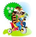 Free Little Raccoon Walking Royalty Free Stock Photo - 28306405