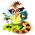 Free Raccoon - The Traveler Royalty Free Stock Photography - 28306417