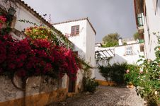 Free Old Beautiful Houses In Medieval City Of Obidos, Portugal Royalty Free Stock Images - 28304209