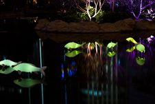 Free Decorative Lightings Stock Photography - 28306472