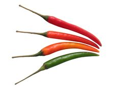 Free Green, Orange & Red Chillies Isolated On White Royalty Free Stock Photography - 28306587