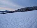 Free Winter Royalty Free Stock Photo - 28315715