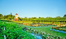 Free Windmill With Flower Garden Landscape Royalty Free Stock Photo - 28315665