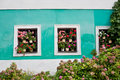 Free Geraniums In Windows Stock Image - 28324181