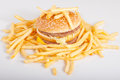 Free Hamburger And French Fries Stock Photo - 28329820