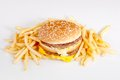 Free Hamburger And French Fries Stock Photo - 28329860