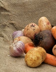 Free Heap Of Raw Vegetables Royalty Free Stock Photography - 28329807