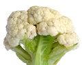 Free Cauliflower On White Background Stock Image - 28330001