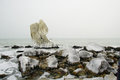 Free Frozen Rocks On The Seaside, Bulgaria Stock Photography - 28334432