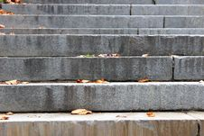 Free Stone Steps With Scattered Leaves Royalty Free Stock Photo - 28330155