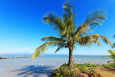 Free Tropical Landscape. Stock Photography - 28339152