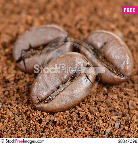 Free Coffee Beans On Ground Coffee Close-Up Royalty Free Stock Photos - 28347598