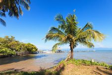Free Tropical Landscape. Royalty Free Stock Photos - 28340908